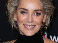 Sharon Stone, divine à 61 ans, dévoile ses seins pour un spécial sexe