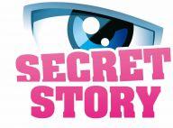 Secret Story 3 (deuxième partie)  : Des secrets étonnants et un casting... explosif !