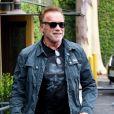 Arnold Schwarzenegger est allé déjeuner dans le quartier de Brentwood à Los Angeles, le 7 juin 2019.