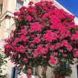 Agustin Galiana en vacances à Syros, en Grèce, le 28 juillet 2019.