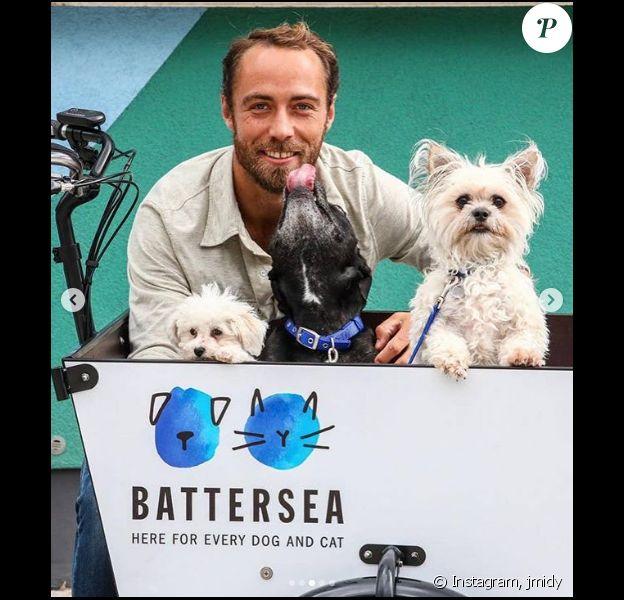 James Middleton et ses chiens sur Instagram, le 7 août 2019.