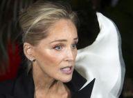 """Sharon Stone exclue d'une application de rencontres : """"Ne me rejetez pas !"""""""
