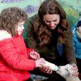 Kate Middleton, duchesse de Cambridge, lors d'une visite à The Ark Open Farm à Newtownards, Irlande, le 12 février 2020.