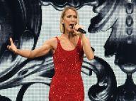 Céline Dion transformée pour Halloween : ses enfants à l'origine de son costume...
