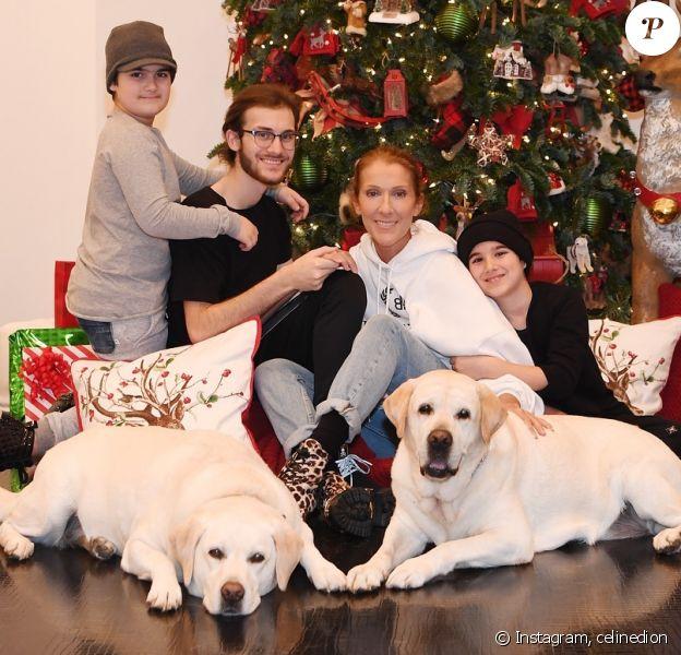 Céline Dion avec ses 3 fils, René-Charles er les jumeaux Nelson et Eddy, et ses chiens Charlie et Bear pour le réveillon de Noël le 24 décembre 2018.