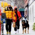 Emily Ratajkowski enceinte et son compagnon Sebastian Bear McClard promènent leur chien Colombo à New York le 8 janvier 2021.