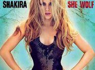 Shakira : Quelques secondes brûlantes de son déhanché... pour son nouveau clip, Give it up to me !