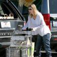 Ellen Pompeo sort de chez Whole Foods Market avec un caddie bien rempli le 14 mars 2010 à Los Angeles