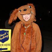 Amanda Seyfried et Ryan Phillippe : un nouveau couple à Hollywood ?