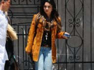 """Vanessa Hudgens de retour de Cannes : """"Certains Français sont imbuvables..."""""""