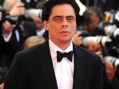 PHOTOS : Benicio Del Toro, très sérieux sur le tapis rouge