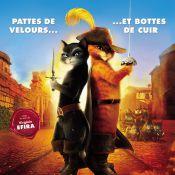 Gérard Lanvin griffé par Le Chat Potté