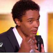 The Voice : Stephan sacré The Voice devant Johnny Hallyday, l'audience s'envole