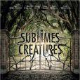 Première affiche teaser française pour Sublimes Créatures.