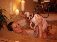 Mariah Carey : Balade en calèche et baisers avec Nick, bain... avec son chien