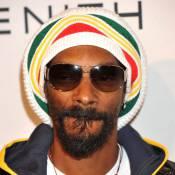 Snoop Dogg : Le rappeur doit plus de 546 000 dollars au fisc !