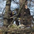 Le roi Carl XVI Gustav lors des funérailles de la princesse Lilian de Suède, le 16 mars 2013 à Stockholm au cimetière du parc Haga