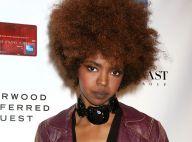 Lauryn Hill : Des arguments étranges pour éviter la prison
