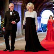 Camilla Parker Bowles : A Amsterdam pour le roi, elle aussi a eu du succès !