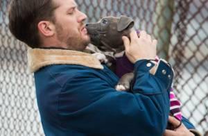 James Gandolfini : Animal Rescue, son dernier film au cinéma avec Tom Hardy