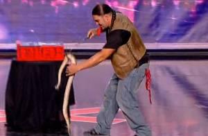 Incroyable Talent 8: Un candidat mordu par un cobra vif, un contorsionniste fou...