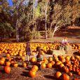 Jade et Joy dans un champ de citrouilles près de Temescal Canyon à Los Angeles, le 15 octobre 2013.