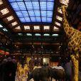 Exclusif -40e anniversaire du WWF au Museum national d'Histoire Naturelle à Paris le 27 novembre 2013.