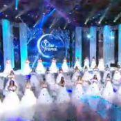 Miss France 2014 : Les 33 Miss métamorphosées en princesses de célèbres contes !
