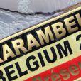 Exclusif - L'écharpe d'Adriana Karembeu, mal orthographiée - Finale de l'élection de Top Model Belgium à Mons en Belgique le 8 décembre 2013.