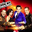Jenifer, Florent Pagny, Garou et Mika : les coachs de The Voice sont de retour le 11 janvier pour la troisième saison (TF1)