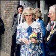 La princesse Diana a trouvé la mort dans un accident de voiture à Paris en 1997.