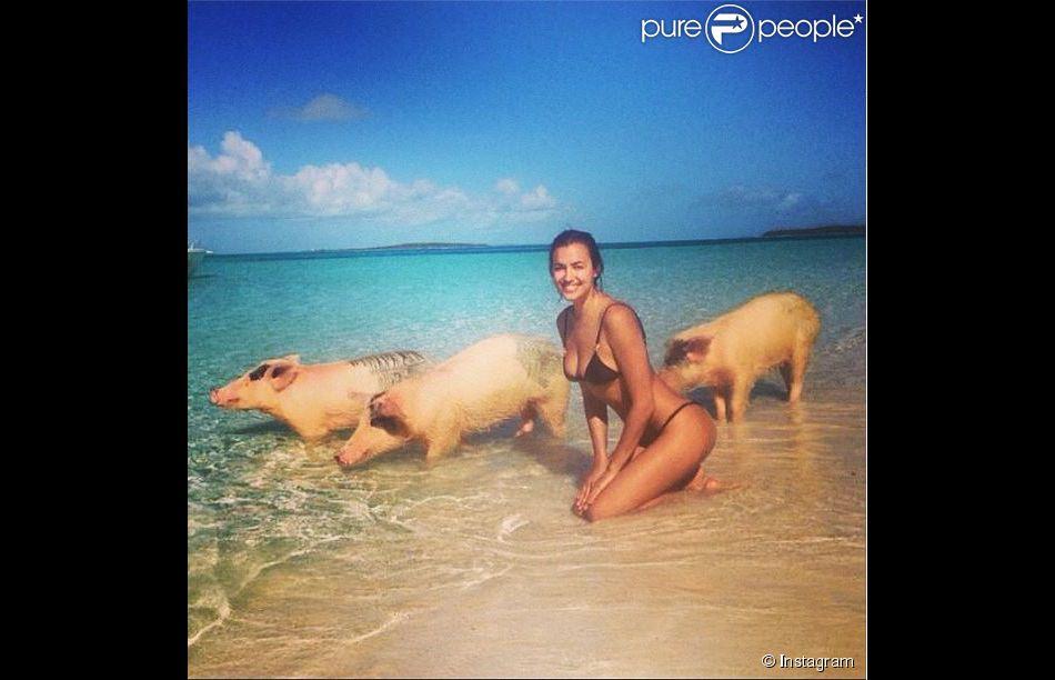 Irina Shayk, sexy en bikini, même au milieu de cochons.