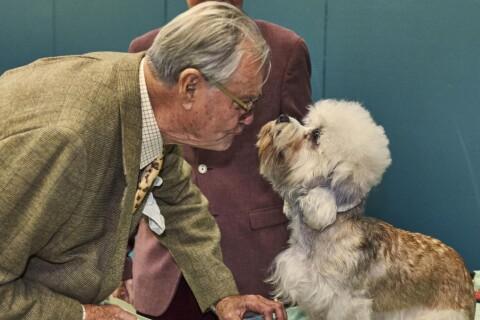 Prince Henrik de Danemark : L'amoureux des chiens savoure sa consécration
