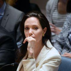 conseil etudes controle en environnement Mantes la Jolie