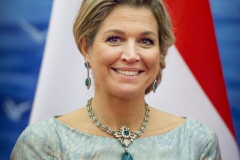Maxima des Pays-Bas atteinte d'une néphrite : Le roi à son chevet...