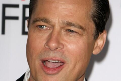 """Brad Pitt : """"Au fond de moi, je suis un agriculteur, pas un acteur"""""""