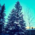 Noël à la neige ! Elle Macpherson passe les Fêtes en famille à Aspen, dans le Colorado. Photo publiée le 24 décembre 2015.