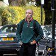 Rocco Ritchie se promène dans les rues de Londres, alors que sa mère a perdu le procès contre son père Guy Ritchie. Le 8 septembre 2016
