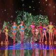 Les 12 demi-finalistes défilent en bikini.   Concours Miss France 2017. Sur TF1, le 17 décembre 2016.