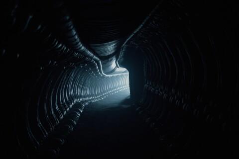 Alien - Covenant : Premières images terrorisantes...