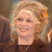 """Brigitte Bardot et """"les rois du pornos"""" arnaqués"""