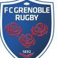 Le FC Grenoble touché par un scandale le 22 mars 2017.