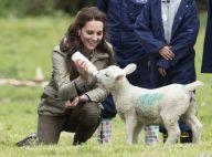 Kate Middleton, fermière au top : Pour la duchesse, le bonheur est dans le pré
