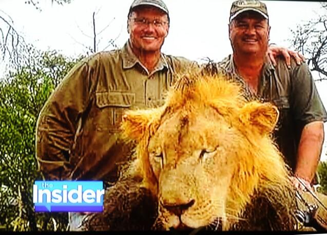 Le fils du lion Cecil abattu au Zimbabwe