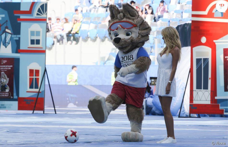 Wolf zabivaka la mascotte officielle de la coupe du monde - La mascotte de la coupe du monde 2014 ...