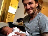 David Beckham : Ce nouveau bébé qui le fait déjà complètement craquer...