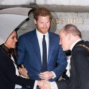 Meghan Markle et le prince Harry, impeccables entourés de vétérans aventuriers
