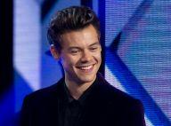 Harry Styles bisexuel ? Ses propos sur scène sèment le doute...