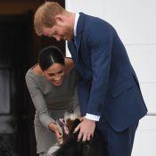 Meghan Markle et Harry révèlent le drôle de nom de leur chien !