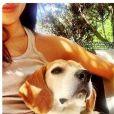 Meghan Markle et son beagle Guy, photo Instagram
